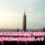 【台北のホテル】COZZI台北民生館で近所の市場や公園で地元の雰囲気を楽しもう!
